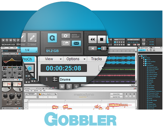 Gobbler-Cloud-Save